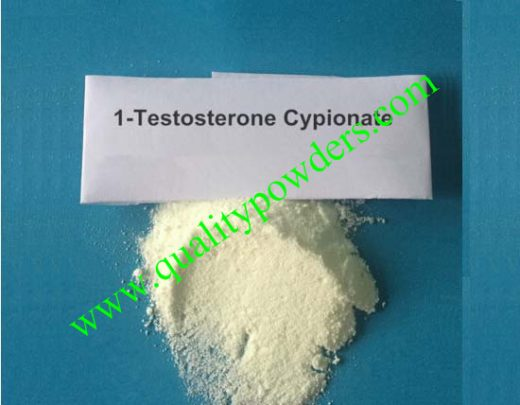 1-Testosterone Cypionate