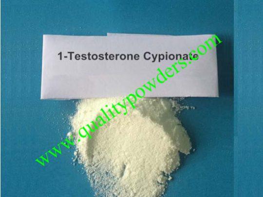 1-Testosterone Cypionate